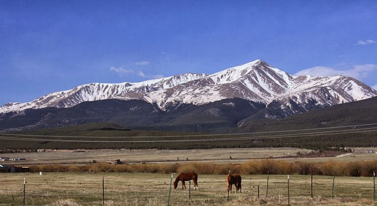 800px-Mount_Elbert_and_horses