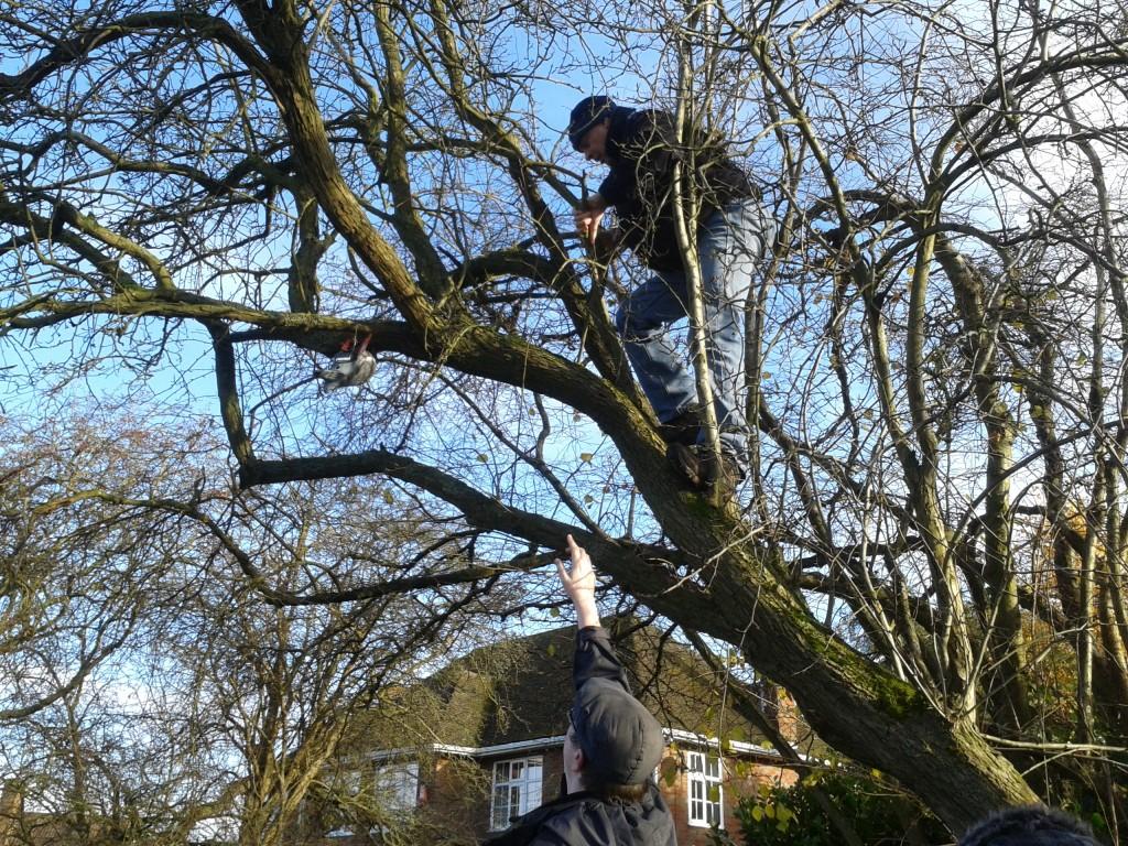 2013-12-08 RFC1149 Paul Climbing Tree